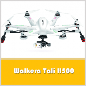 Walkera Tali H500